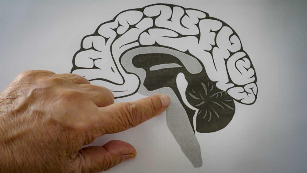 El 1% de la población mundial, tiene problemas de salud mental